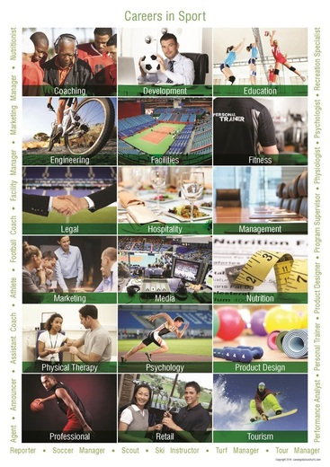 Sports Careers Poster